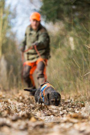 Jagdliche Ausbildung